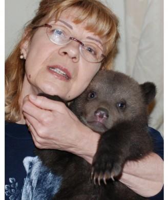 "Urșii ""martiri"""
